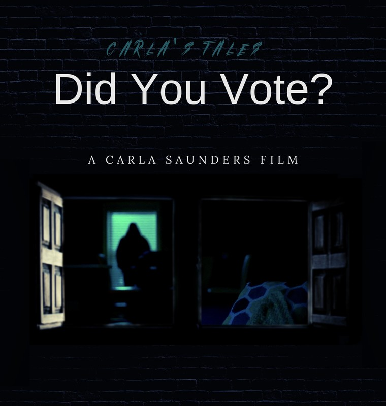 Did You Vote Poster